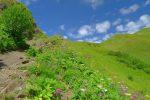 Le joli passage entre roche juste avant le col de la Tavaneuse