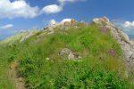 L'arrivée au sommet du Roc de la Tavaneuse, fort jolie