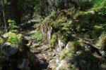 Passage en forêt agréable