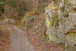 Un rocher avec de belles couleurs de mousses