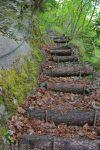 N'est-ce pas mignon ces escaliers ?