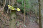 Ce panneau fait désormais corps avec l'arbre