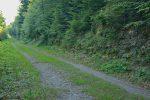 On longe brièvement la Route à Dominique jusqu'au Pt1246