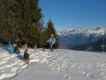 Nous rencontrons un autre propriétaire de chien qui ne se lasse pas de rechercher les boules de neige !