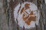 La signalisation du Sentier des Mines sur les arbres