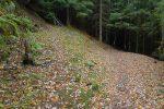 Le chemin se poursuit, mais je remonte vers la route du Col des Planches
