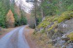 La route est bien agréable.
