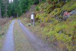 Puis on longe une route forestière
