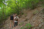 Le chemin monte fort dans la forêt qui n'offre guère de fraicheur en cette chaude journée.