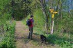 Sous les panneaux des chemins, le panneau aussi jaune explique que c'est impossible pour les chiens !