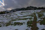 Puis je continue en montant vers le Mont de l'Arpille