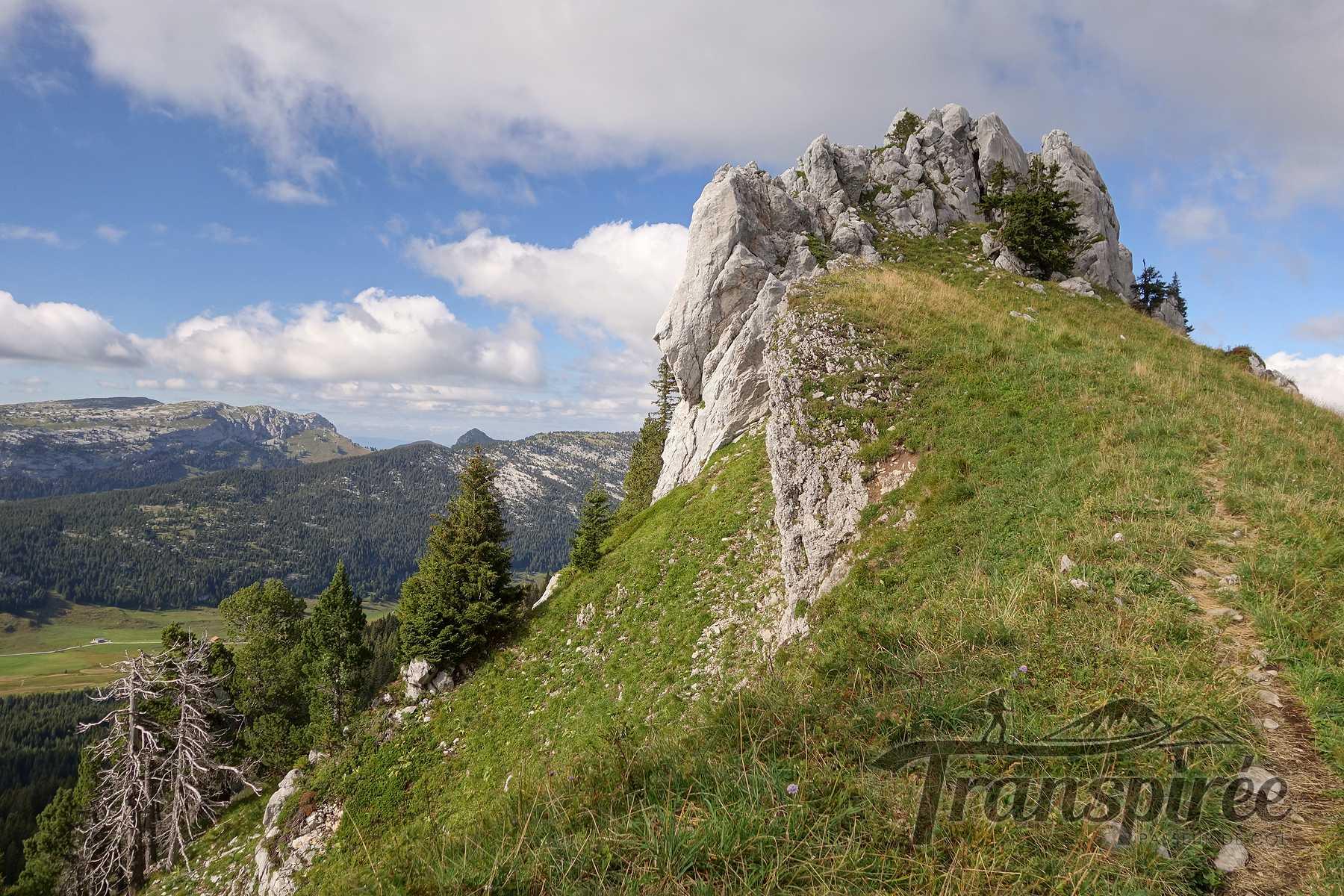 Randonnée à la Pointe de Puvat depuis le Plateau des Glières et Montagne des Auges