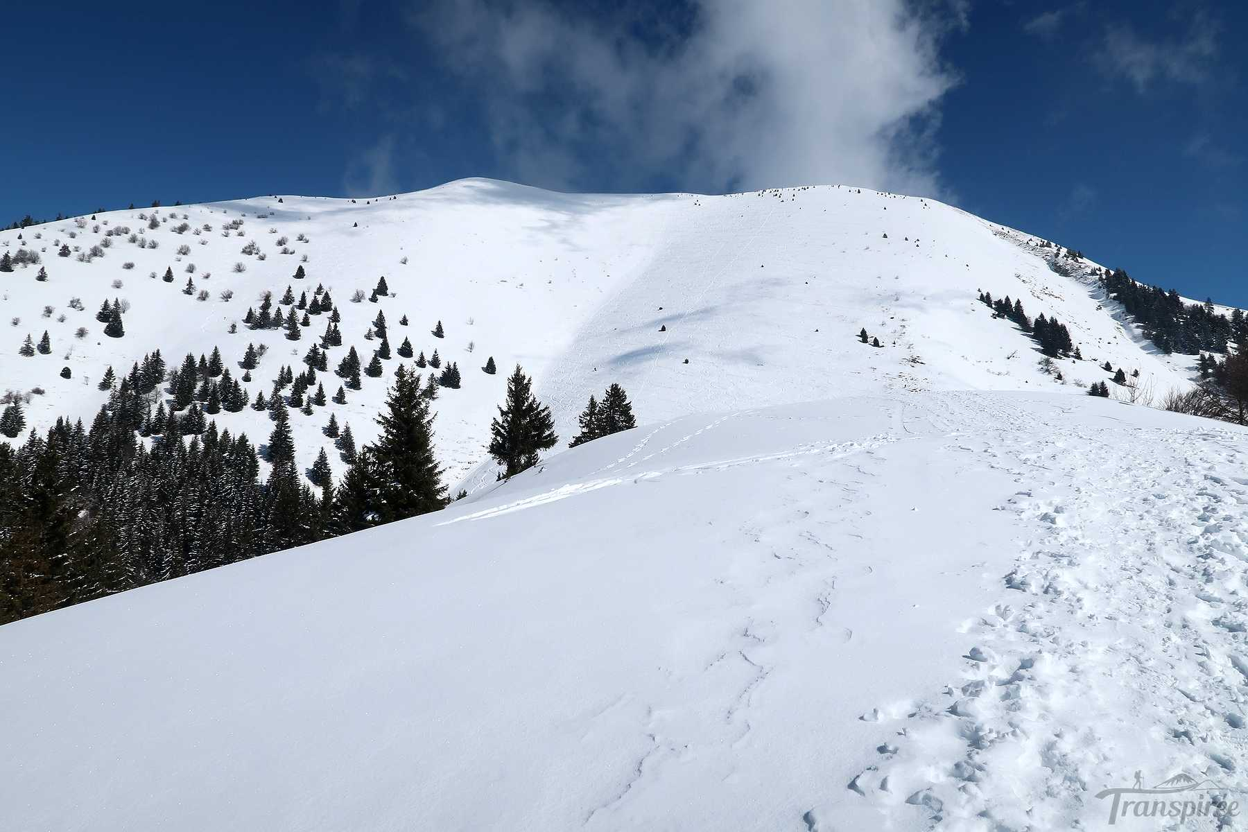 Ski de randonnée au Môle puis Plan Meulet depuis Chez Béroud