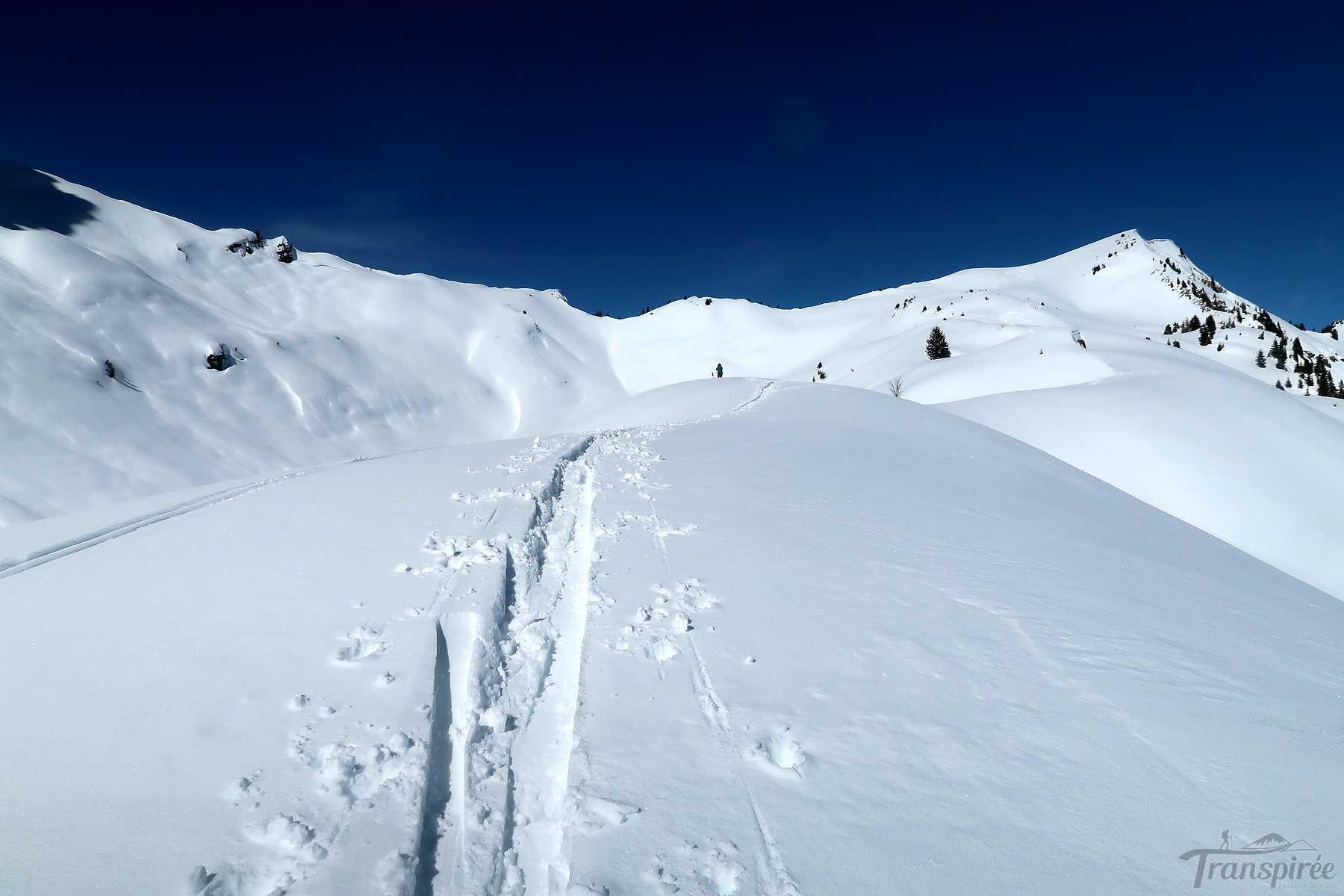 Ski de randonnée à la Pointe d'Ardens depuis le Lac des Plagnes. Retour par le refuge des Tinderets