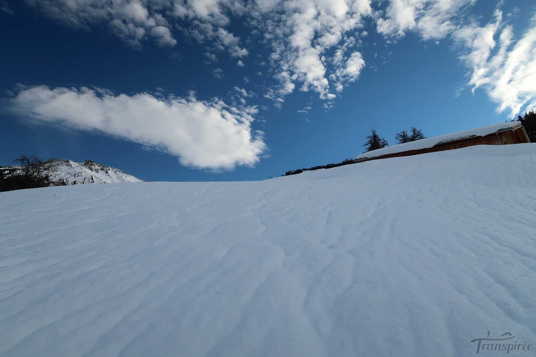 Randonnée à l'alpage de Bouzerou depuis Erdesson. Retour par le bisse Neuf