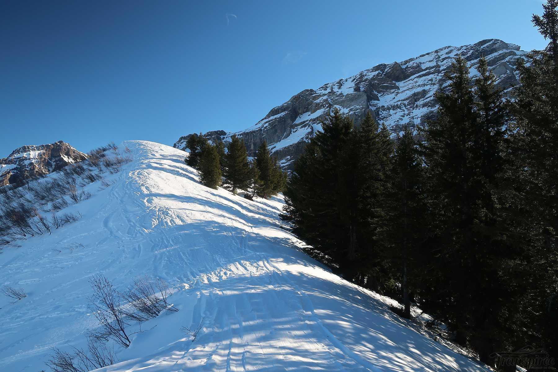 Ski de randonnée à la Pointe de l'Arpille depuis les Diablerets et les Mazots