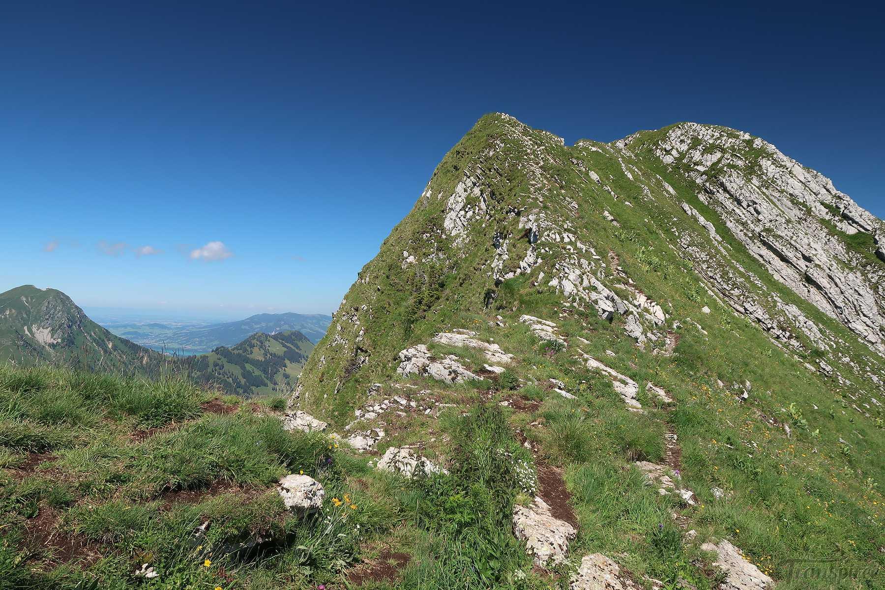 Randonnée à la Dent de Lys depuis les Sciernes d'Albeuve