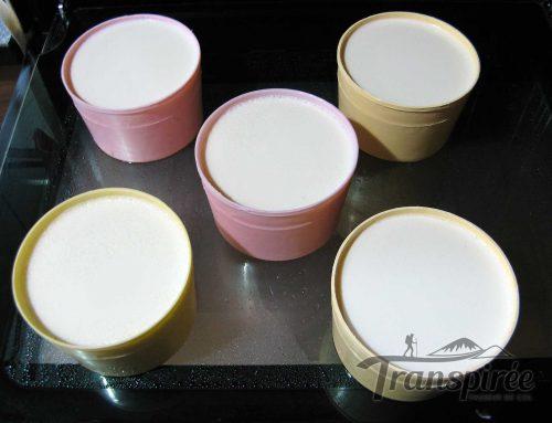 Comment faire ses yaourts à la maison