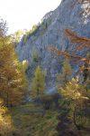 Notre chemin descend à travers la forêt pour rejoindre les pieds de ces rochers