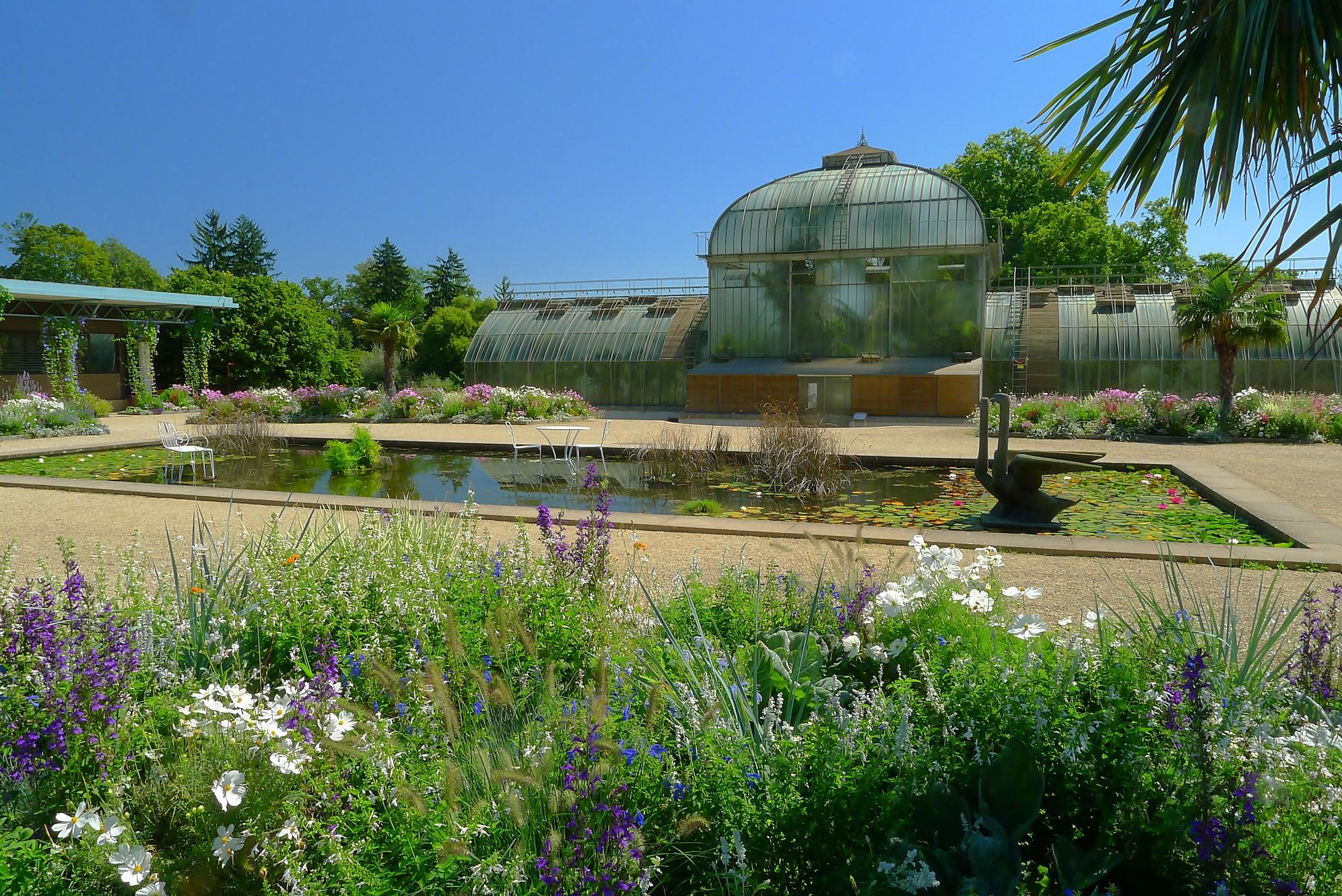 Visite du jardin botanique de gen ve transpiree for Boulevard du jardin botanique 32