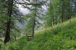 On arrive à la sortie de la forêt, près d'Euzanne