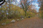Départ depuis Le Coin, lieu-dit Collonges-Le Pérouzet, Sentier Géologique