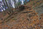 De rares escaliers