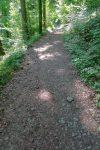 Chemin tranquille