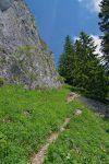 Après une section pentue, le chemin devient plus agréable et longe la paroi