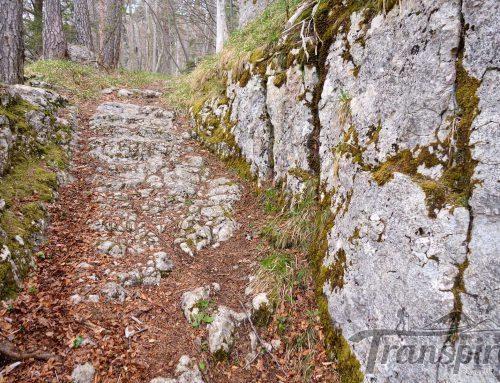 Randonnée au Mont Raimeux depuis Belprahon et les voies romaines