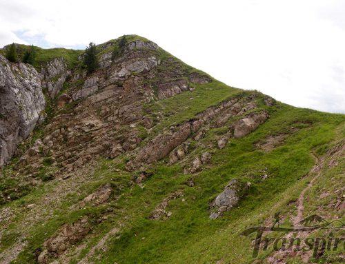 Randonnée aux Rochers de Rayes depuis Rougemont