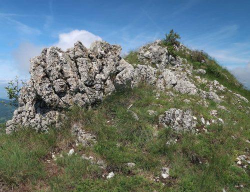 Randonnée à la Montagne d'Hirmentaz depuis La Glappaz puis Crêt des Brottets