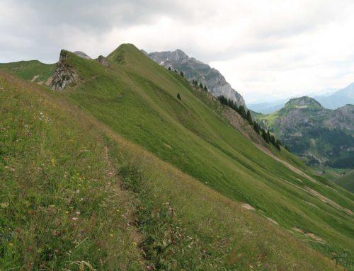Randonnée à la Montagne de Loz depuis La Planche (Novel) , les Chalets de Neuteu puis crête du Vélan