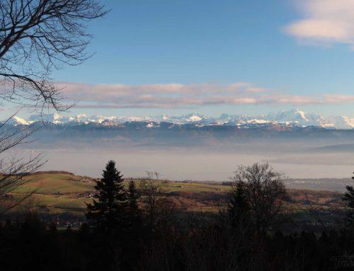Randonnée à La Dunanche et Chenevrières depuis Bassins et Le Vaud