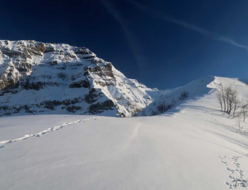 Ski de randonnée à la Pointe d'Arpille depuis les Diablerets