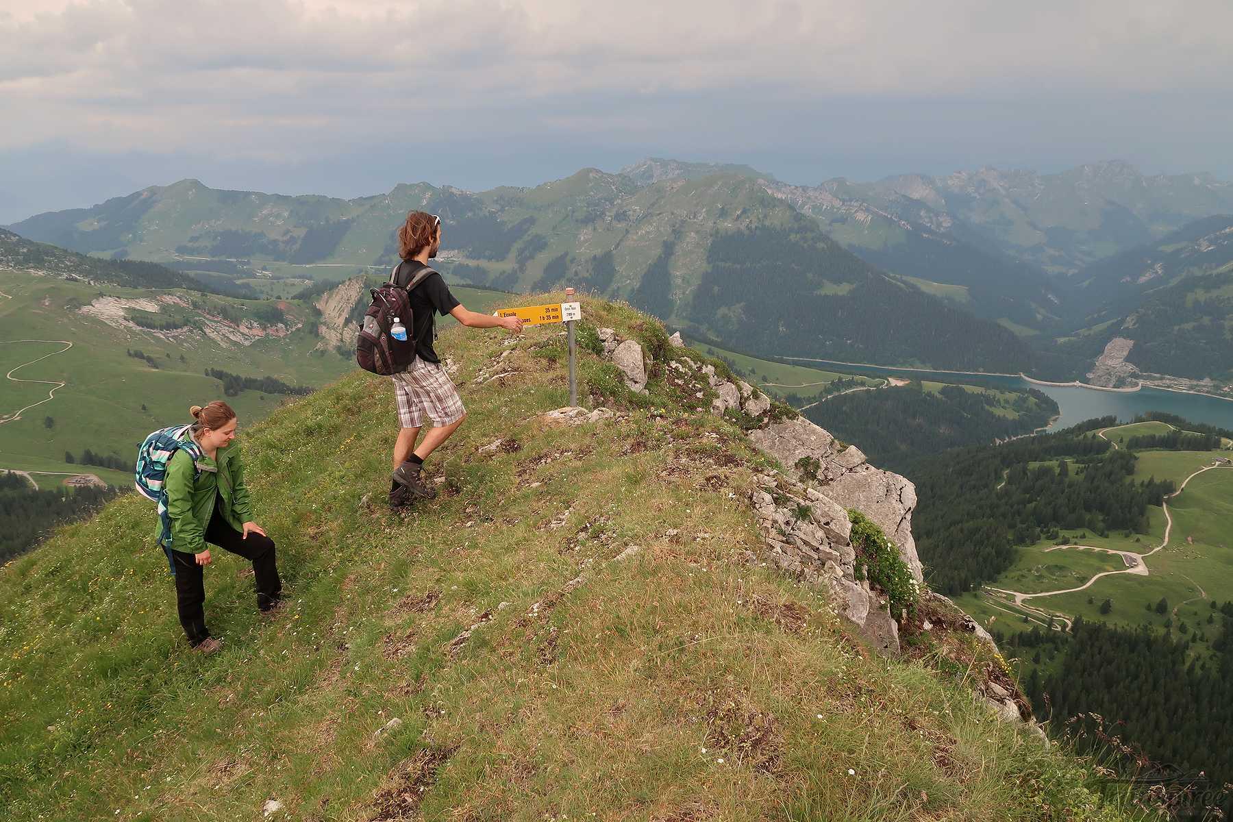 Randonnée au Gros Van du Mont d'Or depuis le Col des Mosses