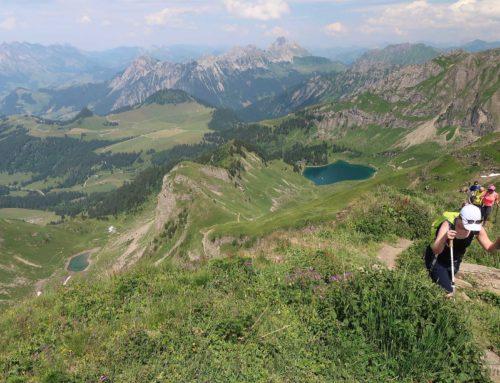 Randonnée au Pic Chaussy depuis le Col des Mosses. Retour par les paravalanches de la Pointe de Semeleys