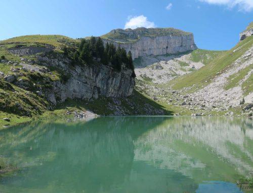 Randonnée au lac de Mayen et Tour d'Aï depuis les Fers