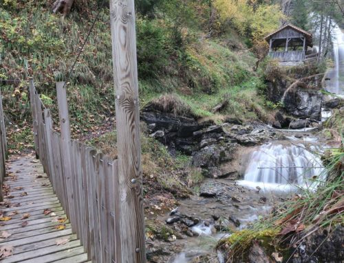 Randonnée à la Marnèche depuis le Col du Pillon. Retour aux Diablerets via la cascade du Torrent