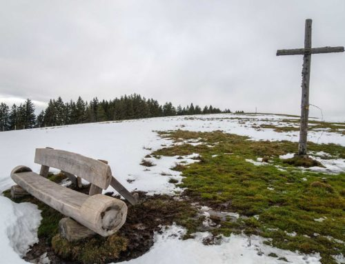 Randonnée aux Alpettes et cabane de Portes depuis Semsales