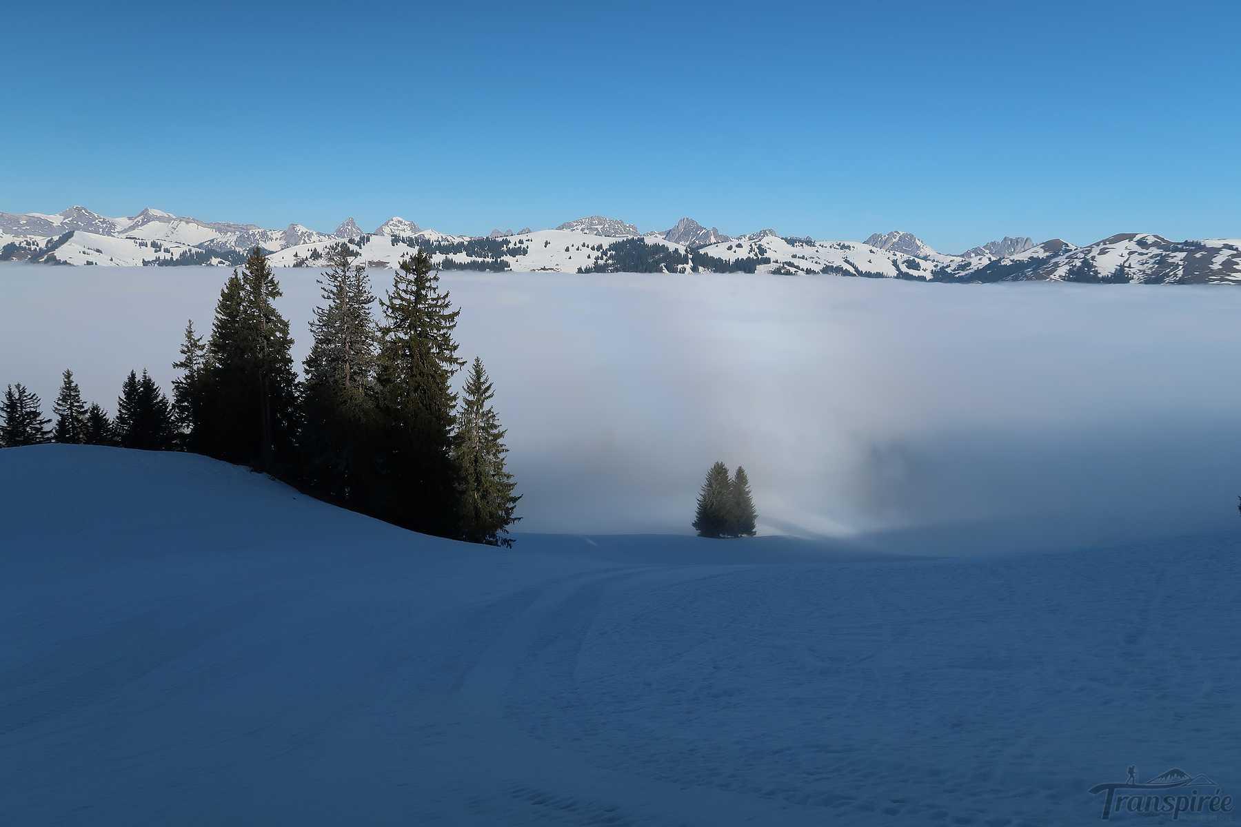 Ski de randonnée au Horeneggli depuis Schönried
