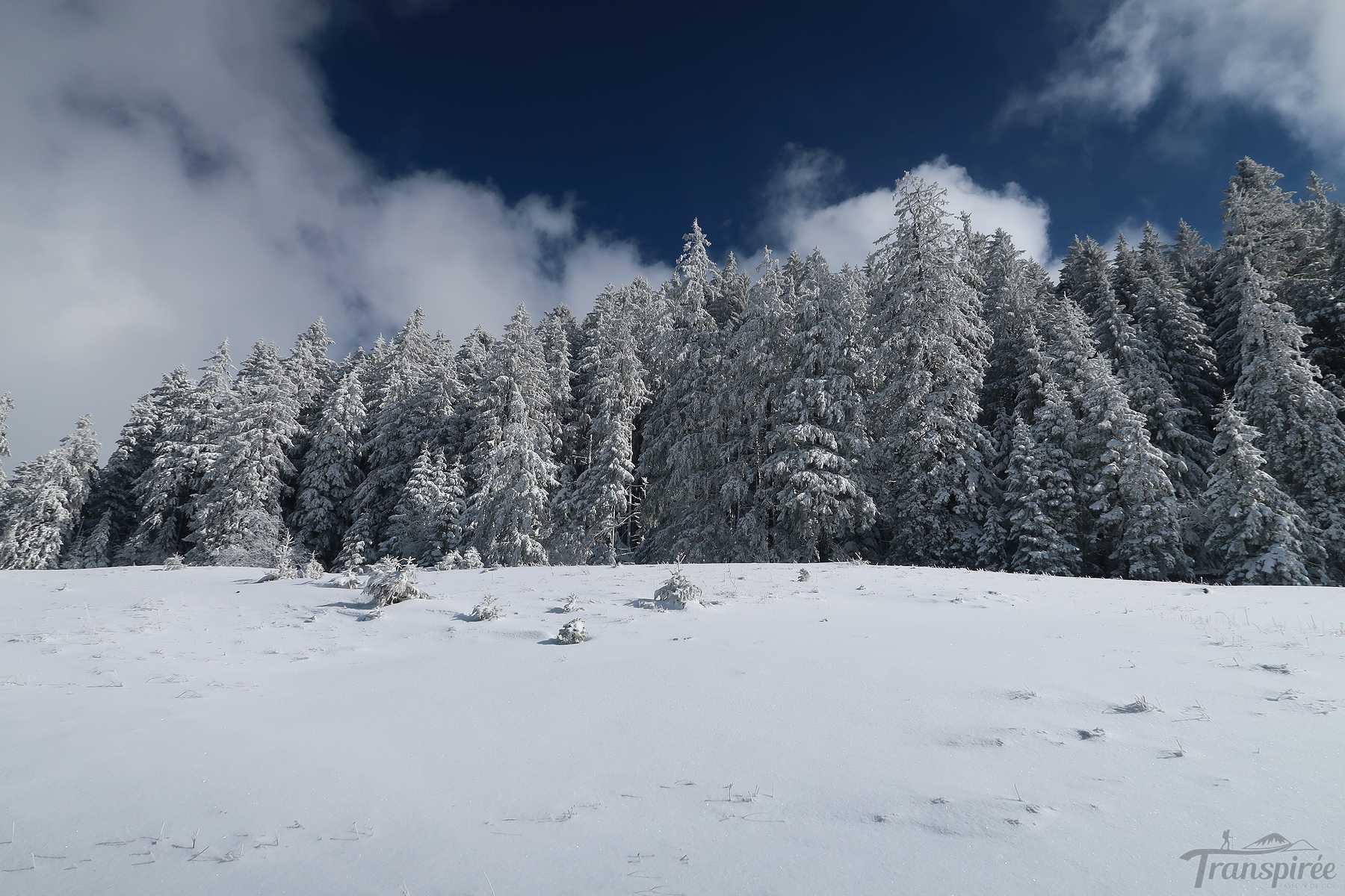 Randonnée au Mont aux Oies depuis Villaret