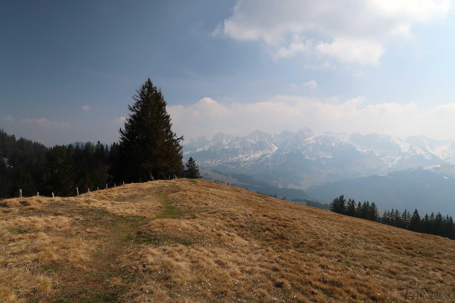 Randonnée au Horbüel et Horbüelpass depuis Zollhaus