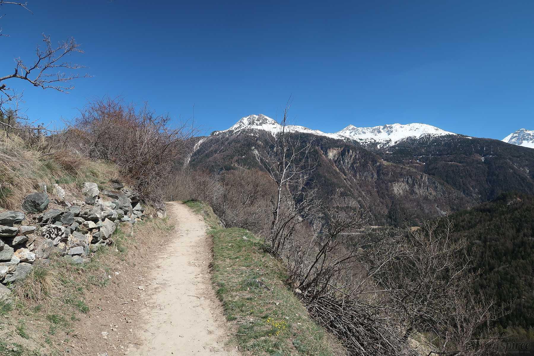 Randonnée au Tour du Mont à Vercorin