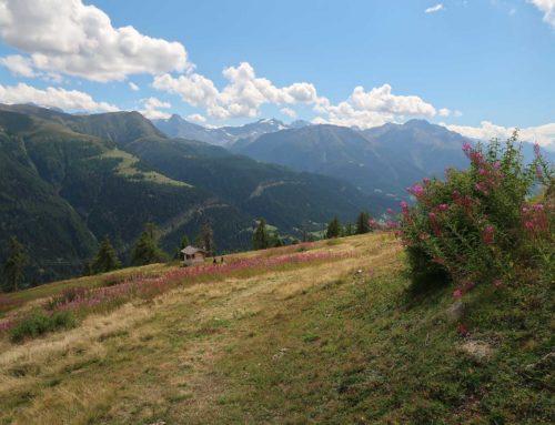 Randonnée à Richinen depuis Bellwald