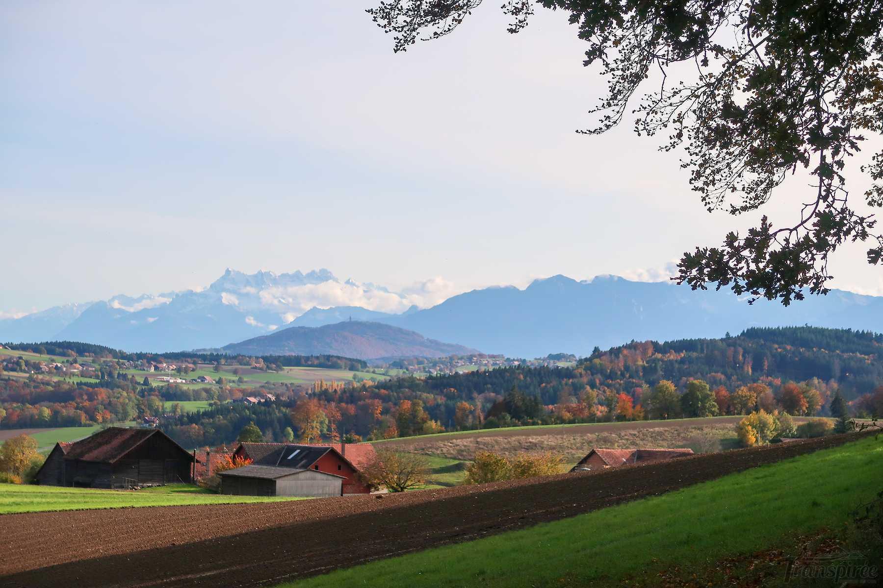 Randonnée à Chavannes et Rossenges depuis Moudon