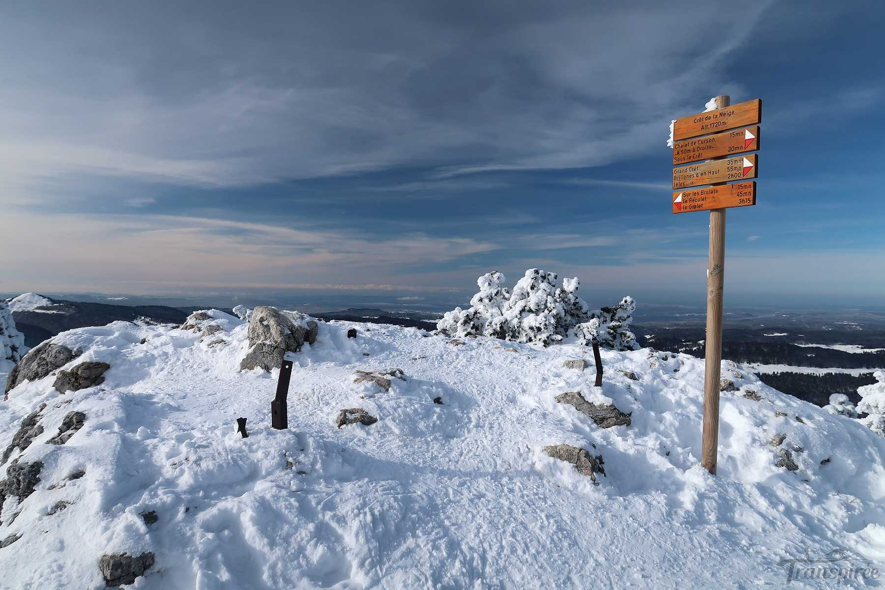 Randonnée au Crêt de la Neige depuis Lélex