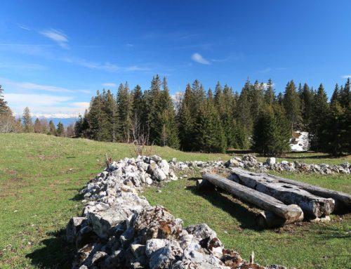 Randonnée à La Vesancière depuis Vesancy